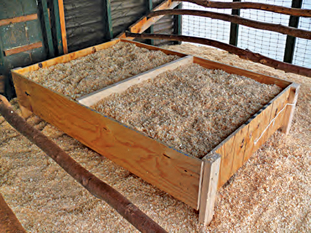 Make Your Own Chick Brooder