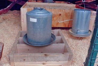 How To Build A Poultry Water Stand