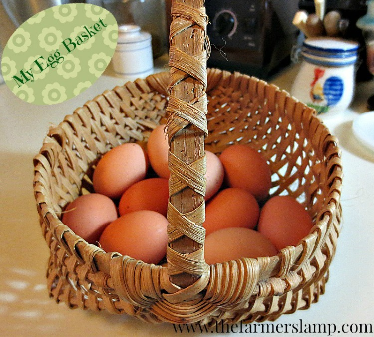 do eggs need to be refrigerated