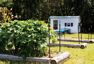 Permaculture, Gardening with Chickens