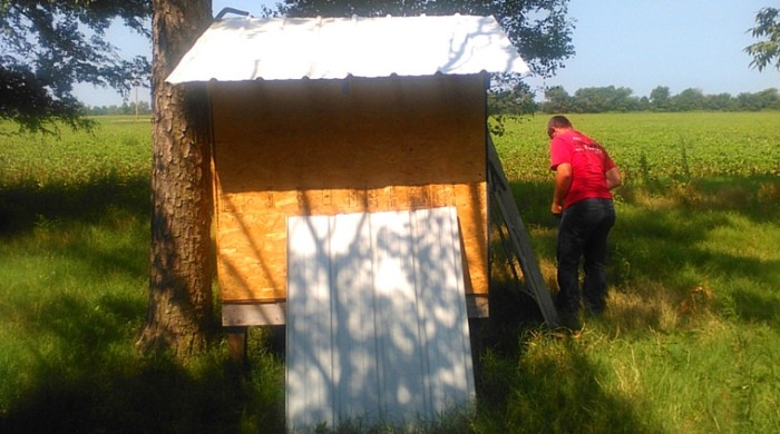 Use This Free Chicken Coop Plan to Build a Sturdy Coop