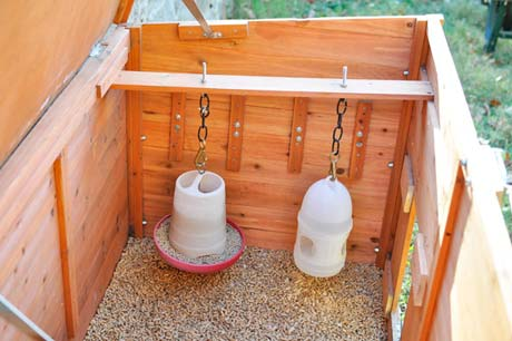 small-chicken-coops
