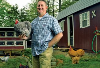 Raising Cochin Chickens: The Journey Of a Lifetime