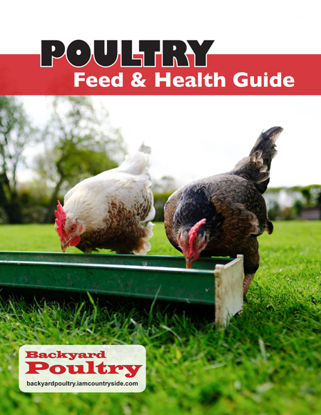Poultry Feed Health Guide