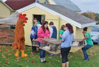 Local Students Connect With Farm Life by Adopting Chickens