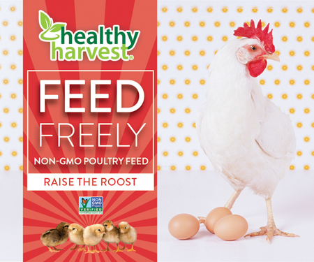 Healthy Harvest Feed