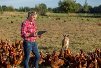 Policy Changes, Farmers, and MeWe vs. Facebook