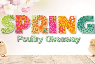 2021 Spring Poultry Giveaway – $4,200 in Prizes!