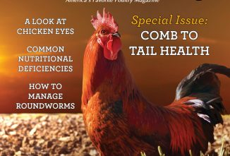 Backyard Poultry Special Subscriber 2020 issue — Comb to Tail Health