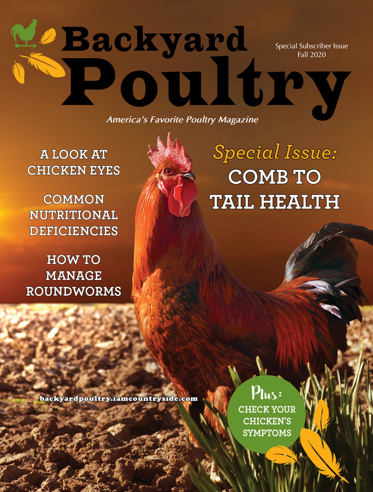 Backyard Poultry Special Issue 2020 – Comb to Tail Health