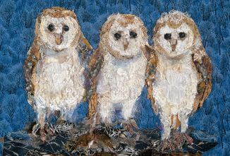 Artist Barbara Shaw makes Beautiful Poultry Portraits
