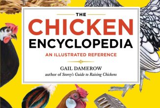 The Chicken Encyclopedia: Your A-Z Guide for Facts about Chickens