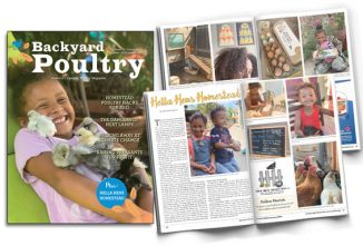 Nominate Your Favorite Flock Owner for a Backyard Poultry Feature