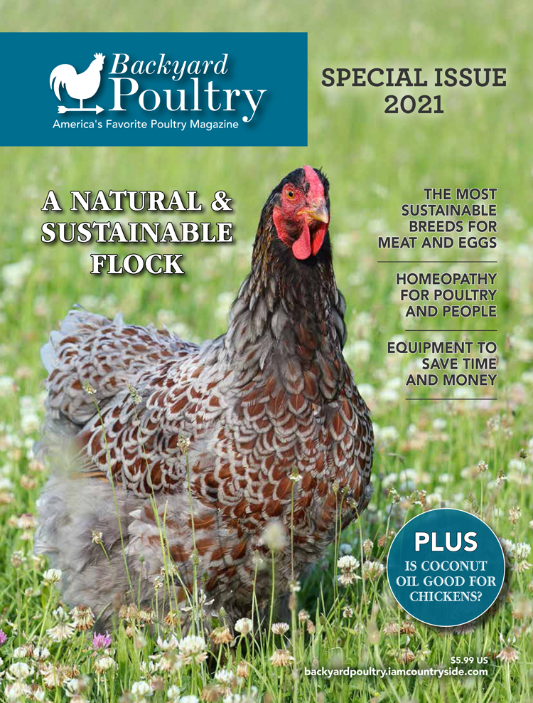 Backyard Poultry — Special Issue 2021